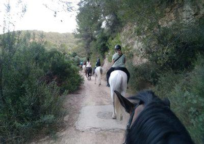 grupo montando a caballo